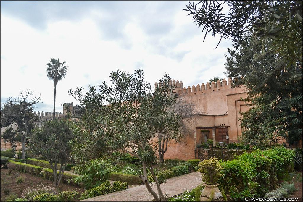 Rabat ardines Andaluces