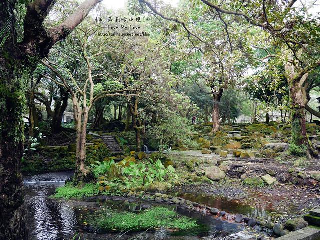 陽明山一日遊景點推薦前山公園 (21)