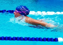 freestyle swimming(0.0), swimming pool(1.0), individual sports(1.0), swimming(1.0), sports(1.0), recreation(1.0), outdoor recreation(1.0), leisure(1.0), azure(1.0), swimmer(1.0), water sport(1.0), medley swimming(1.0), breaststroke(1.0),