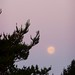 San Simeon State Park - Supermoon (Morning)