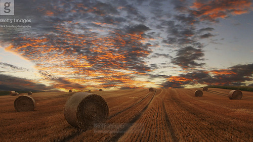 summer beautiful clouds landscape denmark evening countryside harvest scandinavia danmark gettyimages haybales leadinglines canoneos600d canon1585mmusmlens