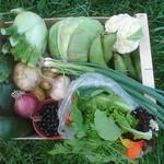 A veggie box ready to go