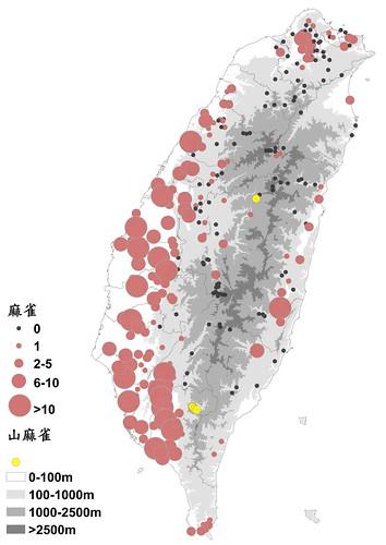 BBS公民科學家觀察累積的數據,做成了全台麻雀、山麻雀分布數量統計圖。圖片來源:BBS Taiwan