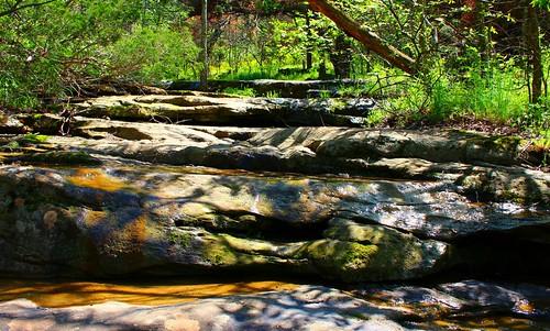 statepark nature illinois unioncounty giantcitystatepark