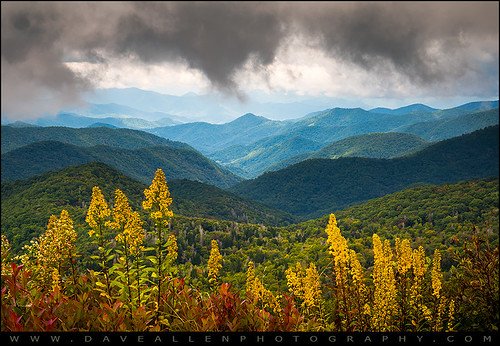 mountains landscape nc goldenrod appalachian blueridgeparkway