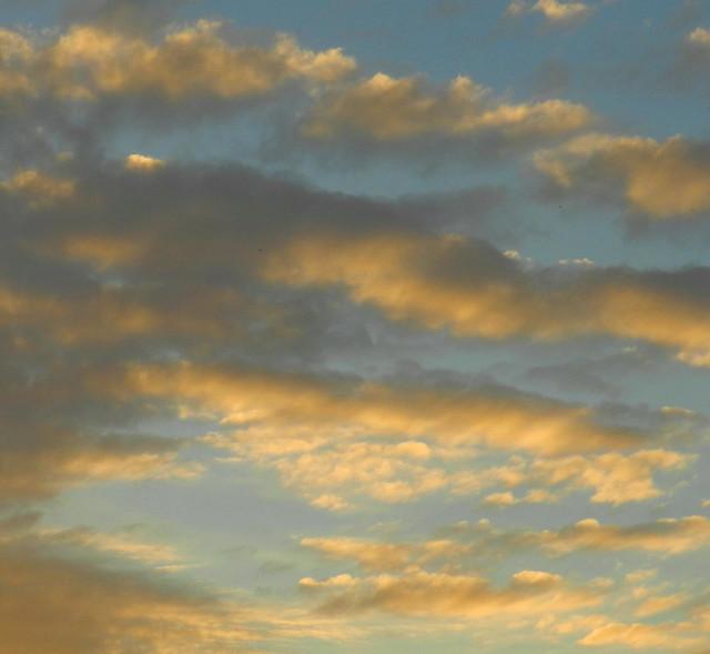 skywatchDSCN2506