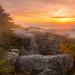 Sunrise @ Dolly Sods Wilderness {Explore}