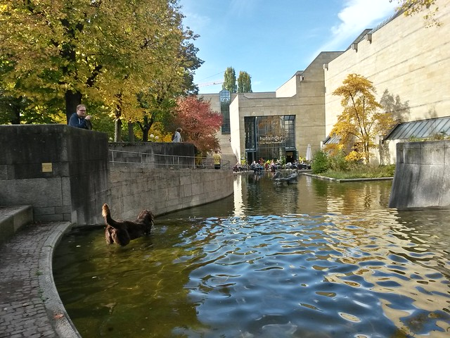 Autumn at the Neue Pinakotheke.