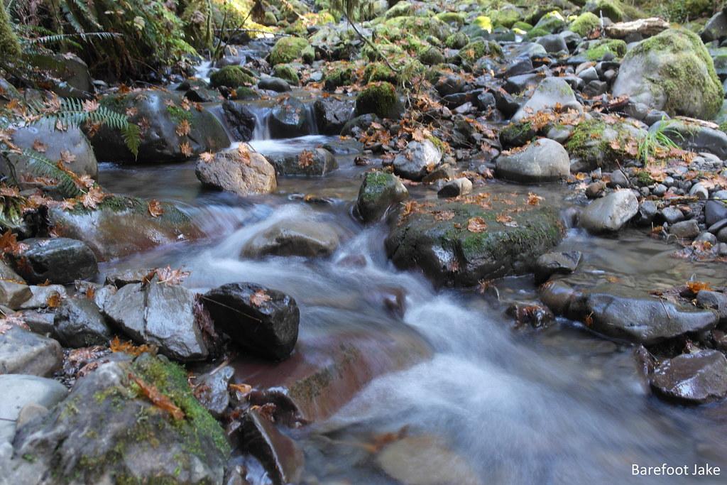Bogachiel creeks