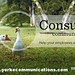 Consultative Communications Training- Yorke Communications