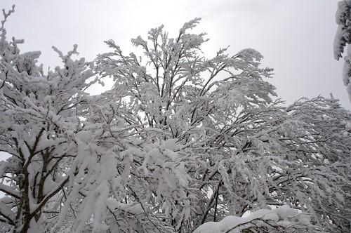 2013-11-26_Mont Fourcat 27