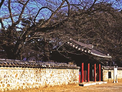 Entrada monumental a uno de los túmulos funerarios más importantes de la ciudad de Gyeongju