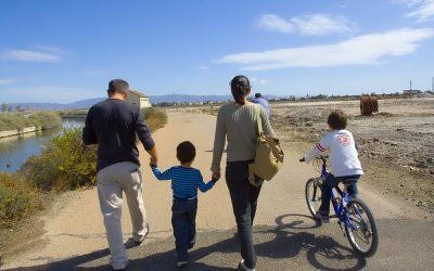 a_piedi_in_bicicletta_e_in_battello_per_scoprire_il_parco_molentargius-0-0-362010