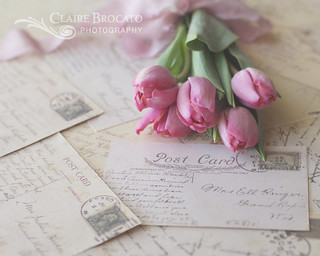 Tulips and vintage postcards