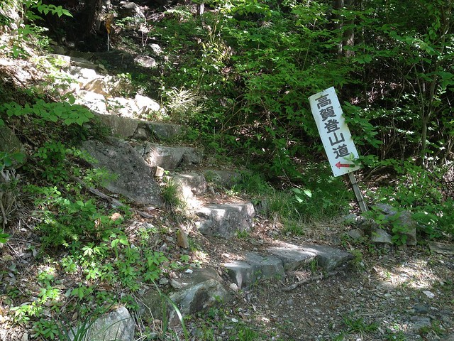 高賀山 宮下作業道から登山道へ