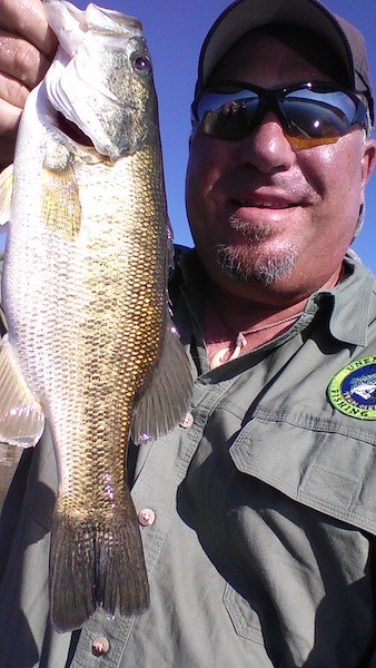 2.5 Pound Lake Casitas Bass