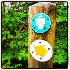 Mortimer Trail #heredfordshire