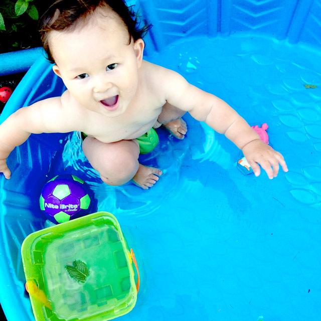 noah-pool
