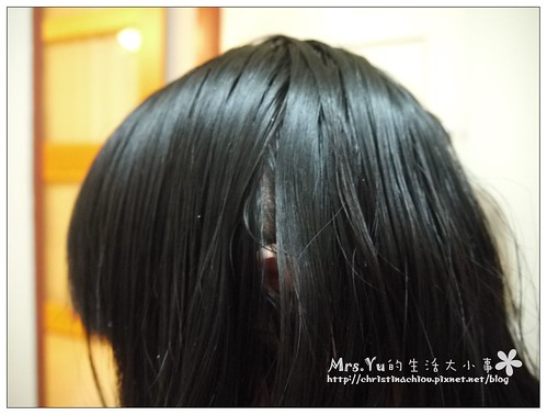康定酵素植萃洗髮乳