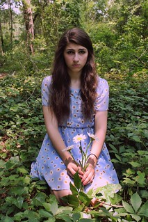 The Girl Who Tried To Plant Daisies In The Forest