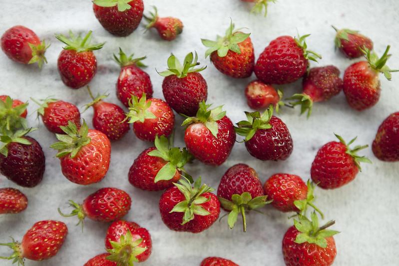 Strawberry PickingIMG_2953
