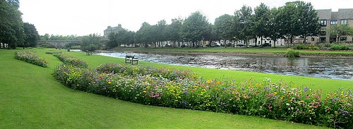River Esk Panorama