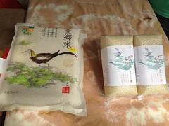 綠保產品之二:菱鄉米,冬季登場的水稻田,是水雉重要的覓食棲地。