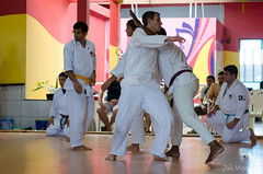 striking combat sports(1.0), hapkido(1.0), individual sports(1.0), contact sport(1.0), taekwondo(1.0), sports(1.0), tang soo do(1.0), combat sport(1.0), martial arts(1.0), karate(1.0), japanese martial arts(1.0),