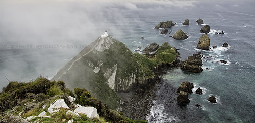 ocean newzealand costa mist misty clouds landscape mar rocks lighthouses seascapes paisaje paisagem hills nubes nuvens neblina seashore niebla rocas oceano novazelândia faros nuevazelanda colinas rochas faróis paisajemarítimo 2013 paisagemmarítima