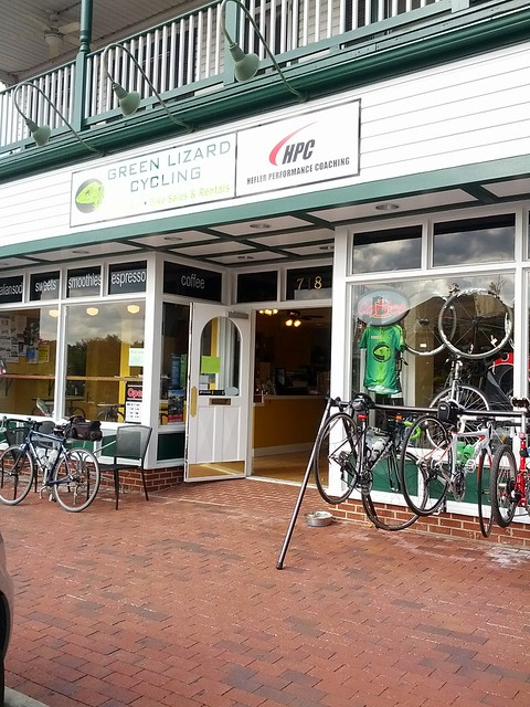Green Lizard Cycling in Herndon