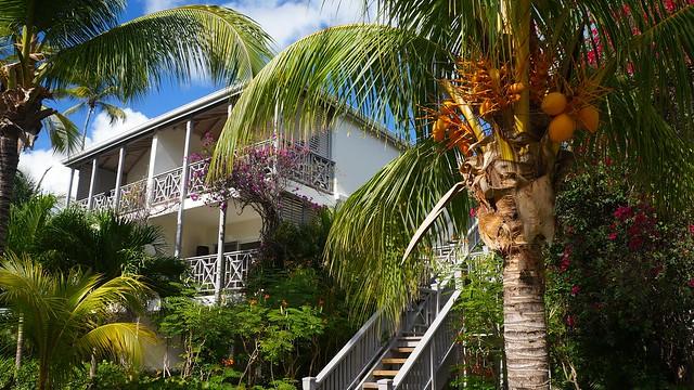Where to Stay Honeymoon Antigua