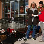 <p>NMDOG adopter and volunteer Sammie Carlson with the NM Council of Residential Specialists, Inc. raised $490 for NMDOG!! Pup Pup Hooray!!</p>