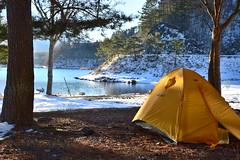 冬季キャンプ@精進湖