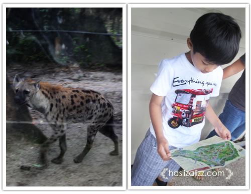 11711861544 fd8163810c o BERCUTI DI HATYAI THAILAND PART 6   songkhla Zoo