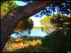 Laguna del Portil (Huelva)