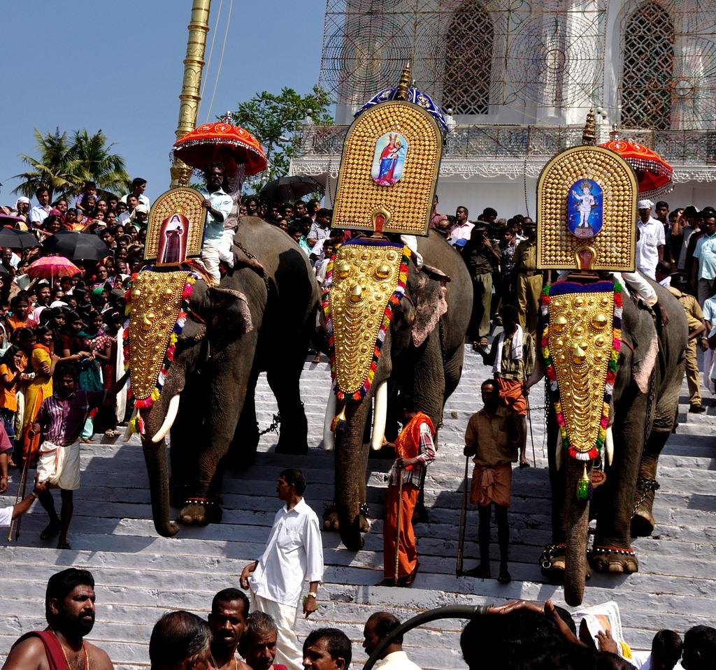 4. Elefantes en la ceremonia de un templo. Autor, Reji