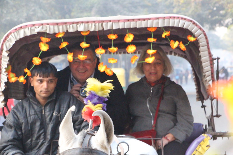 Enjoy Horse Cart Ride