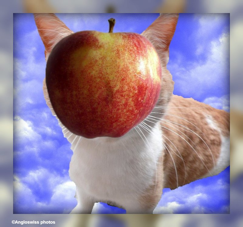roschti and apple