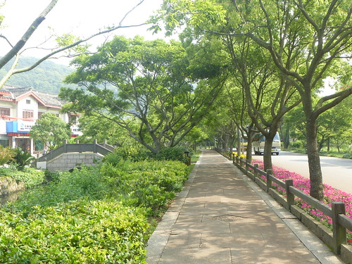 Zhejiang-Putuoshan 5 (70)