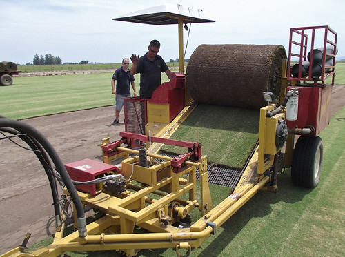 Sod cutters with Green Grass sod farm in Brazil prepare rolls of UGA-licensed TifGrand for use at three World Cup Stadiums in Brazil. Photo Credit: University of Georgia