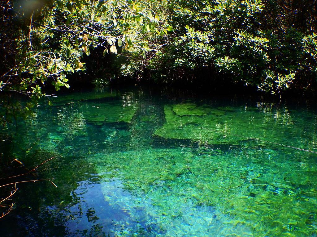 Xcacel Cenote