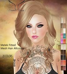 -Sentinus-Melek Fitted Mesh Hair Allcolors