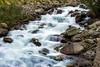 RakaPoshi Stream