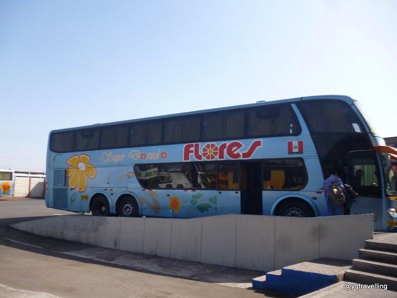 Flores bus