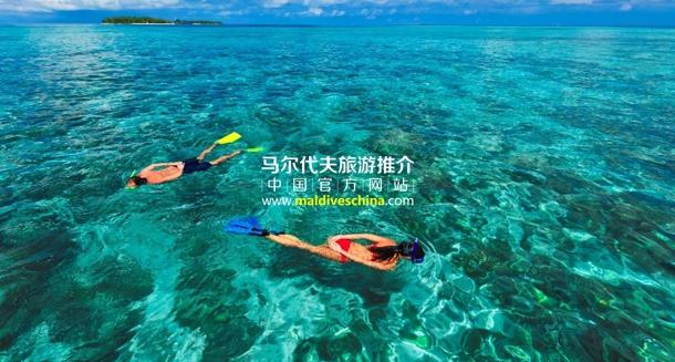 椰子岛库鲁巴度假村房礁浮潜