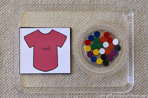 Shirt Color Tray