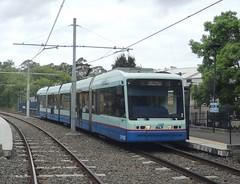 Sydney Light Rail - LRV2102 at Glebe Tram Stop