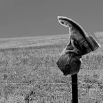 Grasslands, North & South Dakota