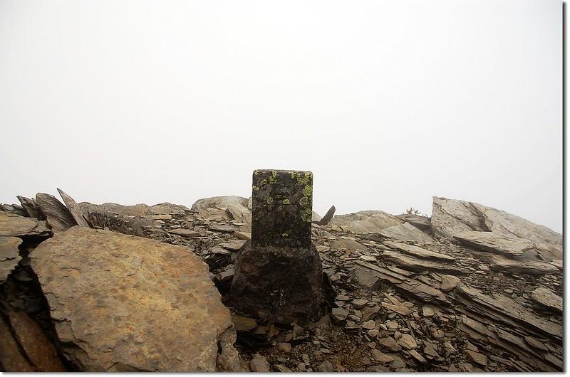 東郡大山森林三角點(Elev. 3619 m)  1