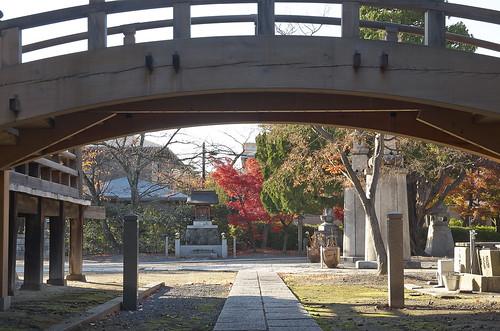【写真】2013 紅葉 : 妙顕寺/2020-11-01/IMGP4146